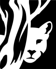 Viñeta - Puma escondido